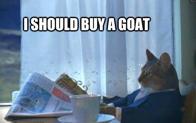 my-goat